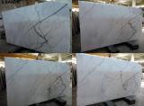 Calacattaの詠唱の大理石の平板のタイル