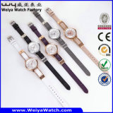 소비자 서비스 공장 가죽끈 석영 숙녀 시계 (Wy-103C)