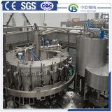Kleines Saft-Getränkewarmeinfüllen-Wasser, das Produktions-Maschine herstellend abfüllt