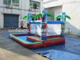 プールが付いている膨脹可能なコンボ水スライド