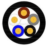 M12 5pin hengelde het Vrouwelijke Recht Cirkel Waterdichte die Schakelaar met Kabel wordt gevormd