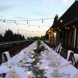 15м 24лампы для использования вне помещений S14 светодиодные лампы накаливания String лампа для свадьбы оформление