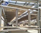 Vor-Ausgeführtes Stahlkonstruktion-Flachgehäuse-Huhn-Haus mit Nizza Entwurf