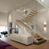Escaleras flotantes personalizado y un único Stringer escaleras con pasamanos de cable de acero inoxidable residencial