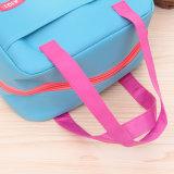 Nouveau style coloré les refroidisseurs de glace sac sacs du refroidisseur d'doux