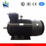Ie2 Ie3 hohe Leistungsfähigkeit 3 Phasen-Induktion Wechselstrom-Elektromotor Ye3-315m1-4-132kw