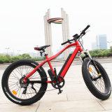 La meilleure bicyclette électrique hydraulique de vente de frein de disque à vendre