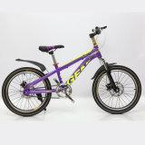 جديدة جدي درّاجة أطفال درّاجة لأنّ 10 سنون طفلة قديم مع سعر رخيصة