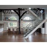 As escadas modernas projetam a escadaria do corrimão/trilhos do vidro Tempered