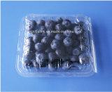 125gプラスチックブルーベリーのクラムシェルのフルーツのPunnet