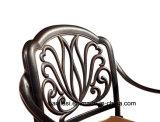 屋外/庭/テラスの藤または鋳造アルミの椅子HS3175c