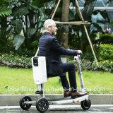 大人250Wのセリウムが付いているFoldable 3つの車輪の電気移動性のスクーター
