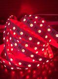 Tira RGBW LED de luz con la certificación Ce&RoHS