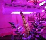 Светодиодные индикаторы рост растений