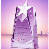 Специальный фиолетовый цвет индивидуальное оформление Crystal трофей для расходных материалов