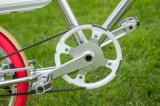 Pouvoir vert urbain sec de 2017 Pedelec E-Vélo en aluminium de bâti de 20 pouces