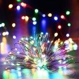 USB 크리스마스 훈장을%s 은 철사 LED 끈 빛