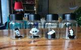 Minigrößen-Wasser-Flaschenglas-Paar-Flaschen-Karikatur-Flasche