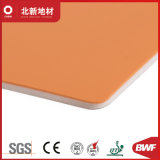 Красочные стабильной толщины ПВХ Пол -4.0мм Hj5012