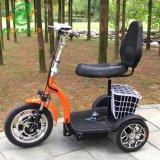 De hete Goedgekeurde 500W Elektrische Driewieler Holyso Met drie wielen van de Verkoop Ce