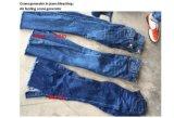 Denim Jeans Decolorのための酸素Feed Ozone Equipment