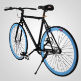 """26"""" Zoll Vitesse unique Fahrrad Fixie Bike Rennrad pignon fixe de vélo de fitness"""