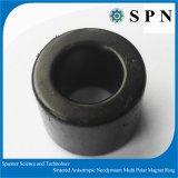 Magneet van de Ring Manget van het neodymium de Sterke Veelpolige voor Motor BLDC