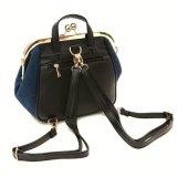 方法流行の女性袋Handbag新しいデザインジーンの女性