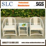 Продажи с возможностью горячей замены для использования вне помещений синтетические плетеной плетеной мебели (SC-B8958)