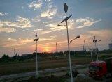 Luz de calle solar de la calle Light/LED del sistema híbrido del viento/lámpara de calle solar con el generador de viento 300W