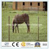 Clôture de maillage en fil d'animal pour Field Fence Farm