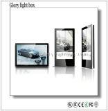 Rétroéclairé par LED pour montage mural intérieur affichage publicitaire