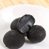 Alho preto de alta qualidade e alho preto feito de China