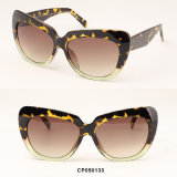 Óculos de sol de tamanho grande da injeção Two-Tone do Cp da alta qualidade