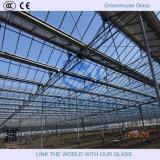 vetro 4-6mmtempered per la serra con Ce&CCC