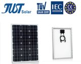 시간 25 년을%s 가진 50W 단청 태양 전지판 보장