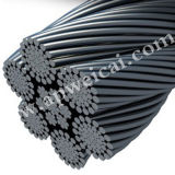 메시 /Balustrade /Cable 메시 그물세공이 꽃 담에 의하여 AISI 304 316 X 가거나 길쌈한 스테인리스에게 Ferruled 케이블 메시를 수교한다