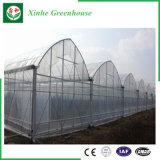 Serra di plastica della multi portata per piantare