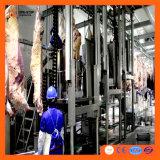 Condotta d'iniezione della strumentazione di macellazione della mucca del macchinario del macello del macellaio per le capre delle pecore