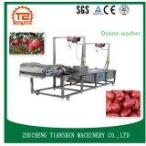 Máquina y lavadora de la colada para la limpieza de la fruta