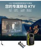 Haut-parleur extérieur multifonctionnel de projection de chariot à subwoofer de karaoke
