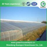 La meilleure Chambre verte de vente de Plastique-Film végétal de serres chaudes