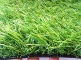 Landschap met het Kunstmatige Gazon Zonder water van het Gras