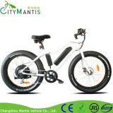 """26 """" 남자를 위한 바닷가 함 후방 모터 전기 뚱뚱한 자전거"""