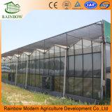 ポリカーボネートの予備品とのAgricolaのための大きいガラス温室