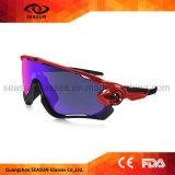 Солнечные очки напольного спорта стекел Sun спортов таможни покупкы большого части Dropship задействуя поляризовыванные чернотой