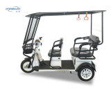 Das preiswerte Indien-elektrische Dreirad für Passagier