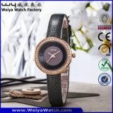 Orologi casuali delle signore della vigilanza del quarzo del ODM di modo (WY-090D)