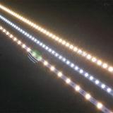 C.C rigide lumineux élevé de la bande 12V 24V de SMD5050 DEL