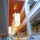 Panneau ignifuge bon marché de plafond de PVC d'absorption saine de Comme-Bois